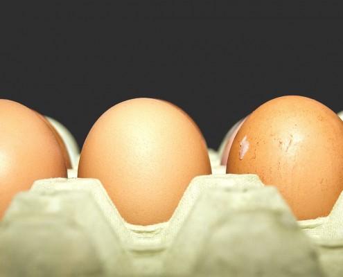 eier-ketogen-495x400 Ketogene Diät - Ernährungspläne, Rezepte & mehr | Alles für deinen Start!