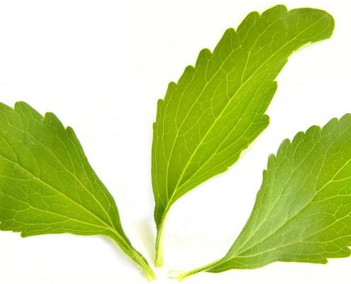 ketogene diät stevia